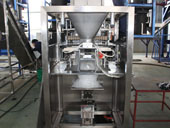 Customized fully-automatic ice packer
