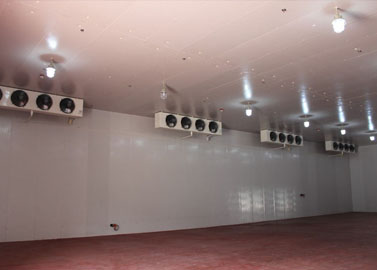 Large cold room