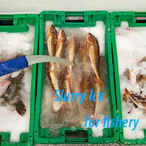 slurry ice